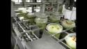 Оборудование для фасовки квашенной капусты и салатов.